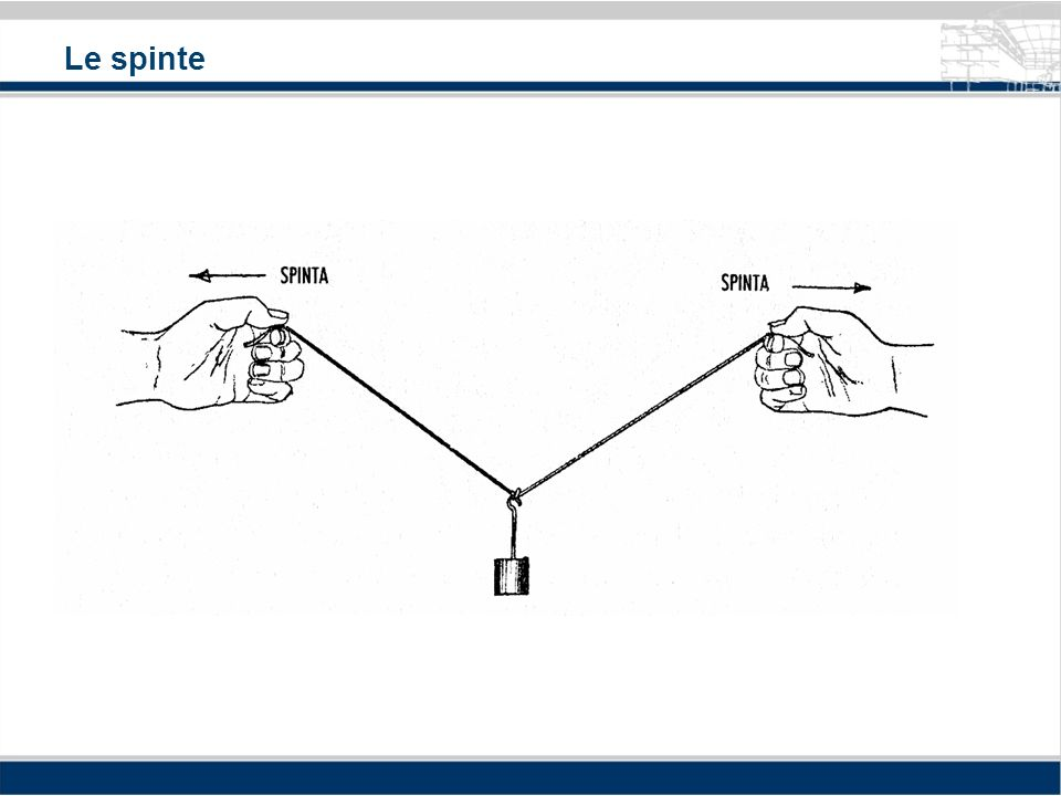 Sforzi di trazione e compressione 1. struttura in trazione 2. struttura in compressione