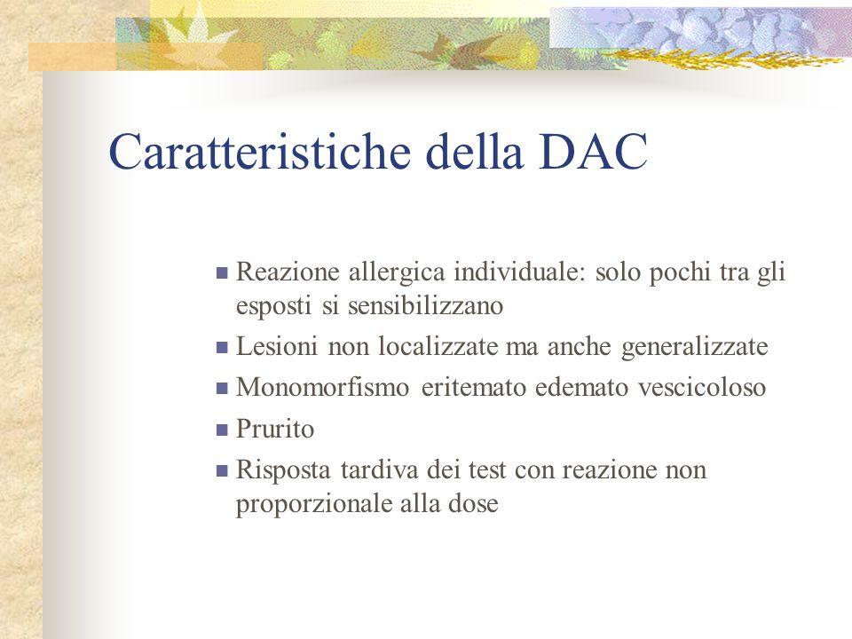 Caratteristiche della DAC Reazione allergica individuale: solo pochi tra gli esposti si sensibilizzano Lesioni non localizzate ma anche generalizzate Monomorfismo eritemato edemato vescicoloso Prurito Risposta tardiva dei test con reazione non proporzionale alla dose