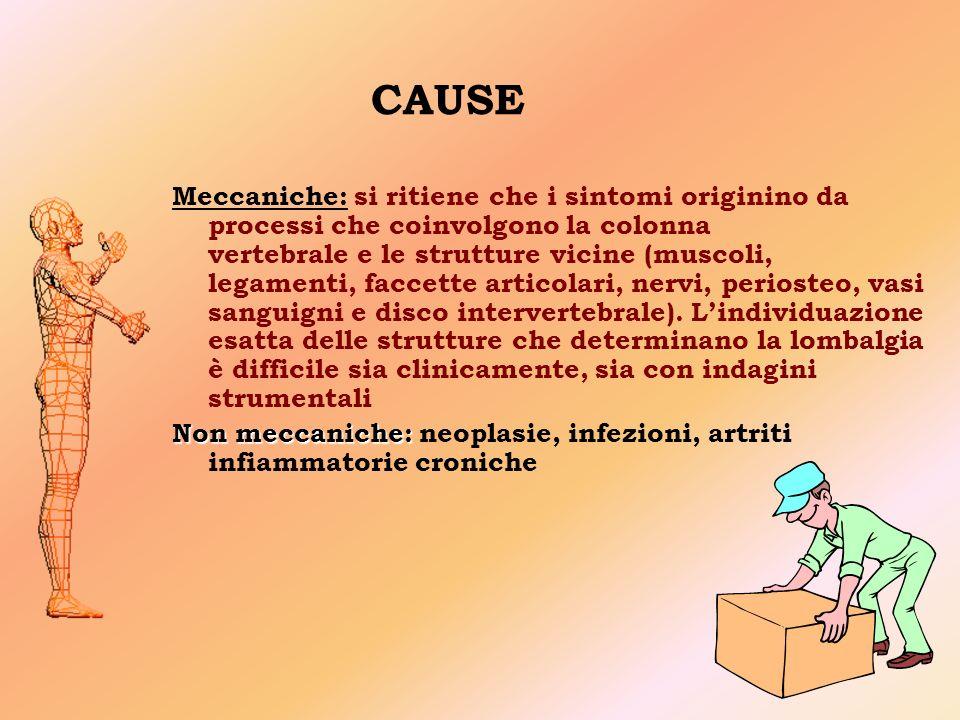 CAUSE Meccaniche: si ritiene che i sintomi originino da processi che coinvolgono la colonna vertebrale e le strutture vicine (muscoli, legamenti, faccette articolari, nervi, periosteo, vasi sanguigni e disco intervertebrale).