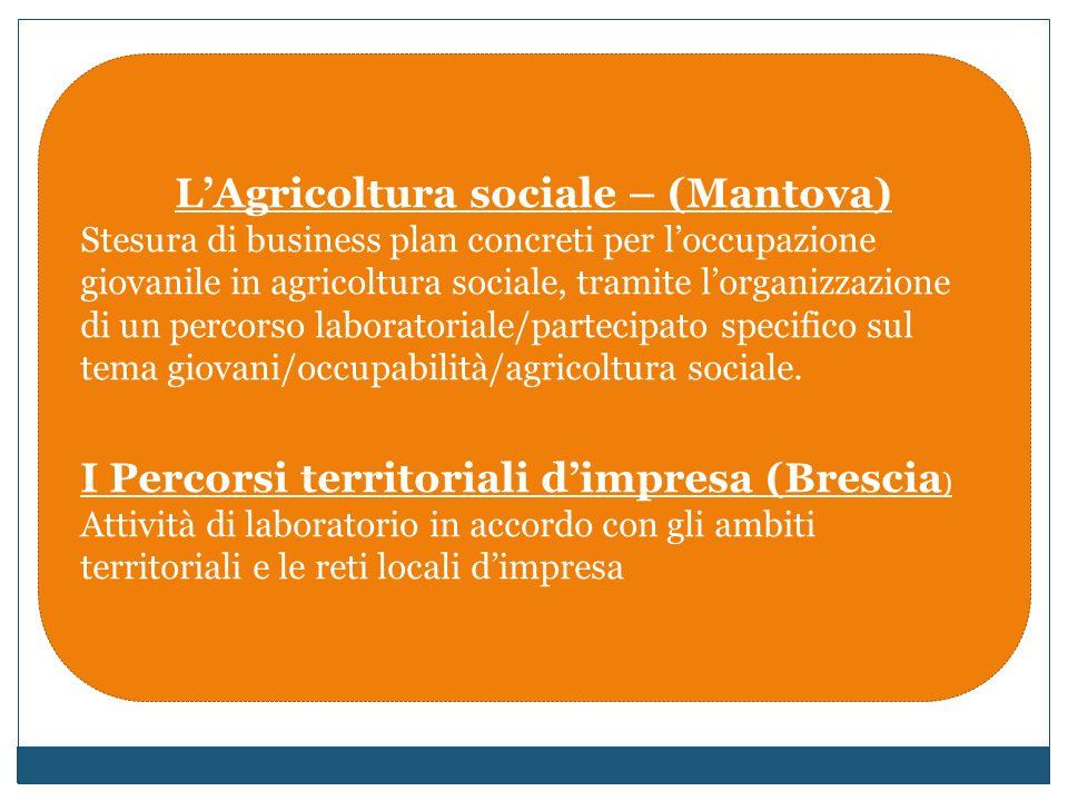 LAgricoltura sociale – (Mantova) Stesura di business plan concreti per loccupazione giovanile in agricoltura sociale, tramite lorganizzazione di un percorso laboratoriale/partecipato specifico sul tema giovani/occupabilità/agricoltura sociale.
