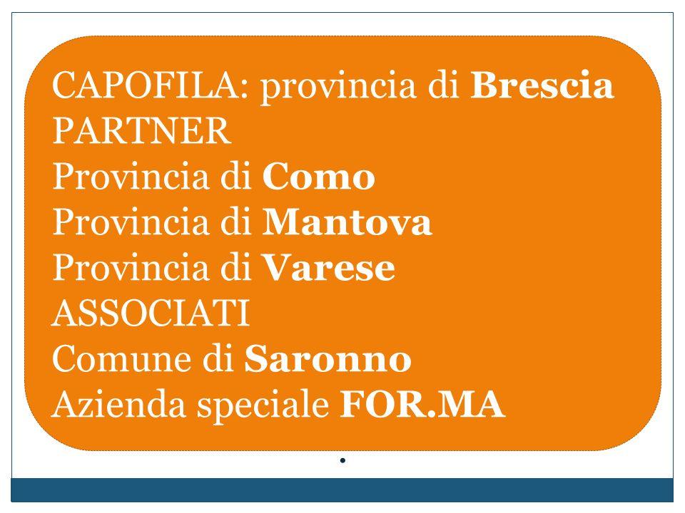 CAPOFILA: provincia di Brescia PARTNER Provincia di Como Provincia di Mantova Provincia di Varese ASSOCIATI Comune di Saronno Azienda speciale FOR.MA.