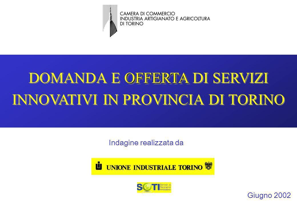 1 OFFERTA DOMANDA E OFFERTA DI SERVIZI INNOVATIVI IN PROVINCIA DI TORINO Giugno 2002 Indagine realizzata da