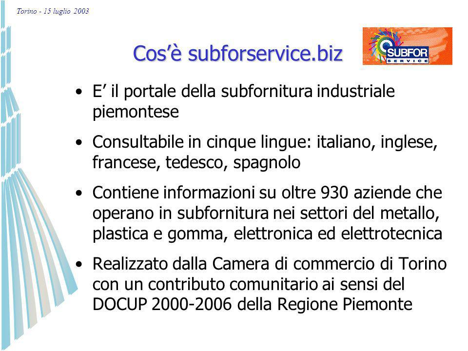 Torino - 15 luglio 2003 Nuova iscrizione per imprese/10 Aggiornamento dati già presenti nel portale/5 Compilazione-modifica del questionario La banca dati è articolata in 5 schede che devono essere compilate e aggiornate