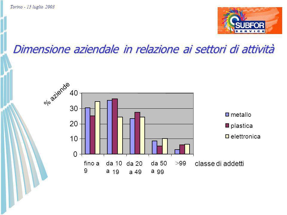 Torino - 15 luglio 2003 TO 63% BI 2% NO 9% CN 9% AL 7% VC 4% AT 3% VB 3% Localizzazione delle aziende subfornitrici nelle provincie piemontesi