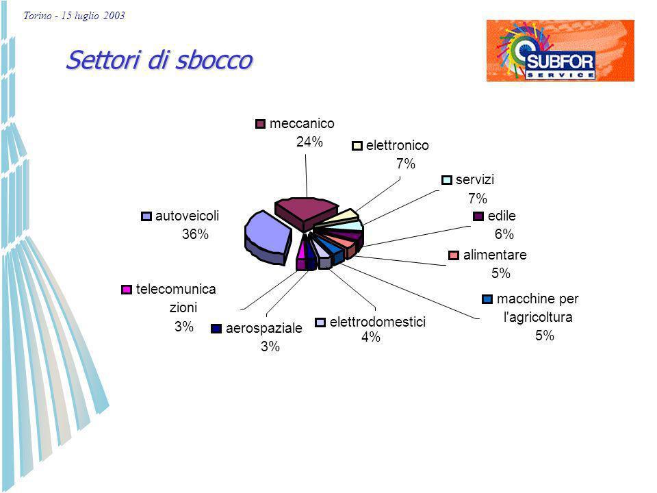 Torino - 15 luglio 2003 Oltre il 50 % delle imprese iscritte in subforservice.biz esporta, con preferenza per paesi UE Scambi con lestero