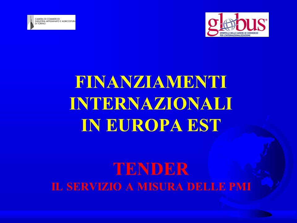 TENDER Il servizio gratuito di supporto alle imprese per le gare dappalto e i progetti internazionali tender@to.camcom.it