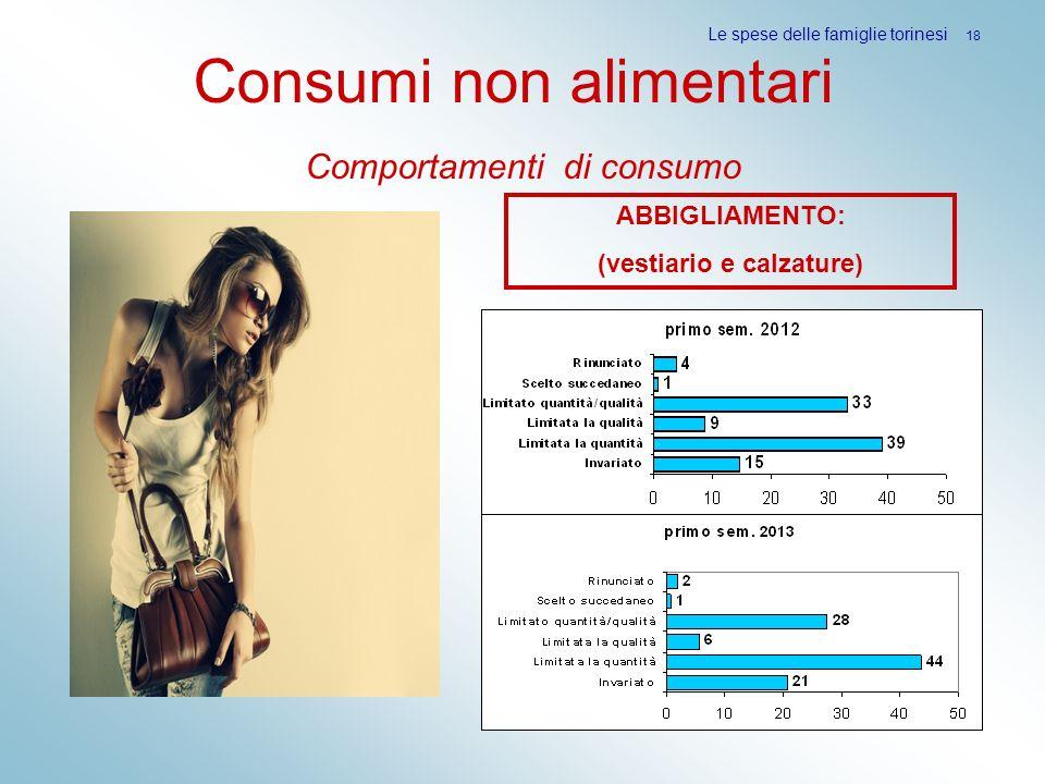 Consumi non alimentari Comportamenti di consumo Le spese delle famiglie torinesi 18 ABBIGLIAMENTO: (vestiario e calzature)