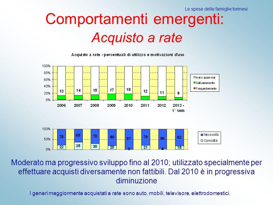 Le spese delle famiglie torinesi Comportamenti emergenti: Acquisto a rate Moderato ma progressivo sviluppo fino al 2010; utilizzato specialmente per e