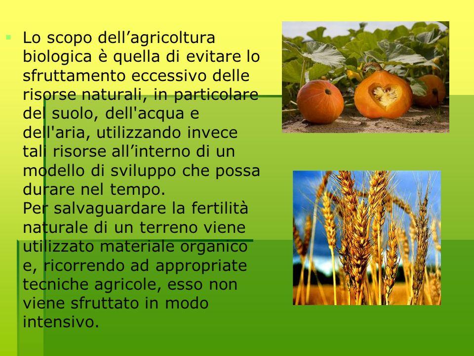Lo scopo dellagricoltura biologica è quella di evitare lo sfruttamento eccessivo delle risorse naturali, in particolare del suolo, dell'acqua e dell'a