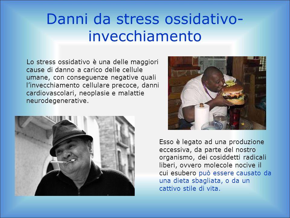 Danni da stress ossidativo- invecchiamento Lo stress ossidativo è una delle maggiori cause di danno a carico delle cellule umane, con conseguenze nega