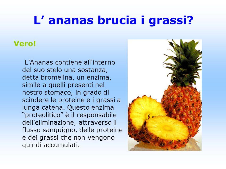 Vero! LAnanas contiene allinterno del suo stelo una sostanza, detta bromelina, un enzima, simile a quelli presenti nel nostro stomaco, in grado di sci