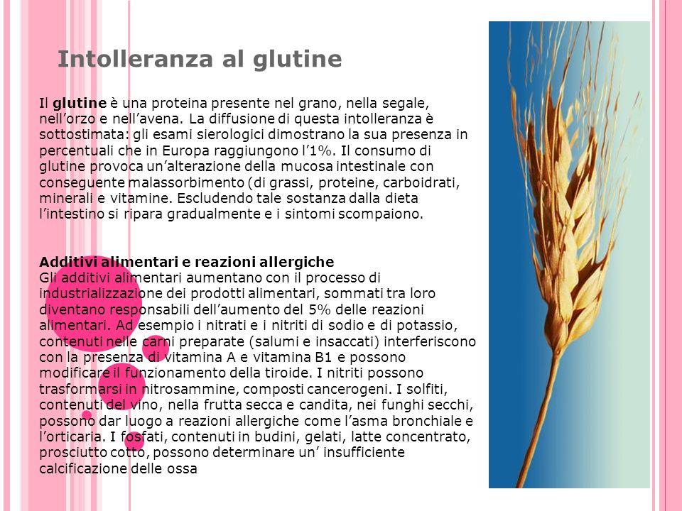 Intolleranza al glutine Il glutine è una proteina presente nel grano, nella segale, nellorzo e nellavena. La diffusione di questa intolleranza è sotto