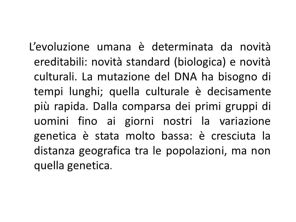 Levoluzione umana è determinata da novità ereditabili: novità standard (biologica) e novità culturali. La mutazione del DNA ha bisogno di tempi lunghi