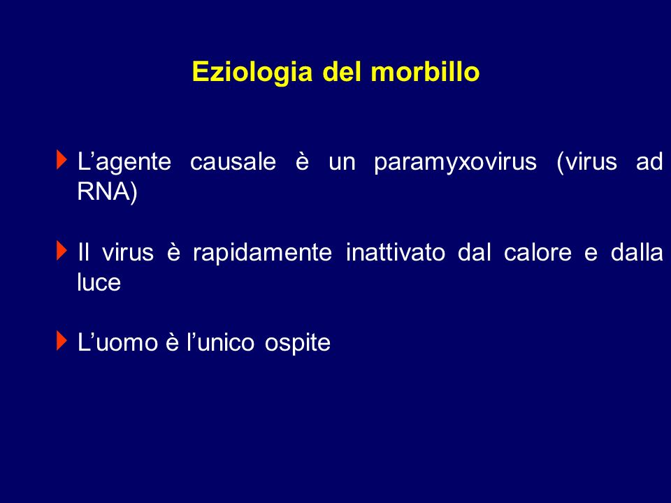 Lagente causale è un paramyxovirus (virus ad RNA) Il virus è rapidamente inattivato dal calore e dalla luce Luomo è lunico ospite Eziologia del morbil