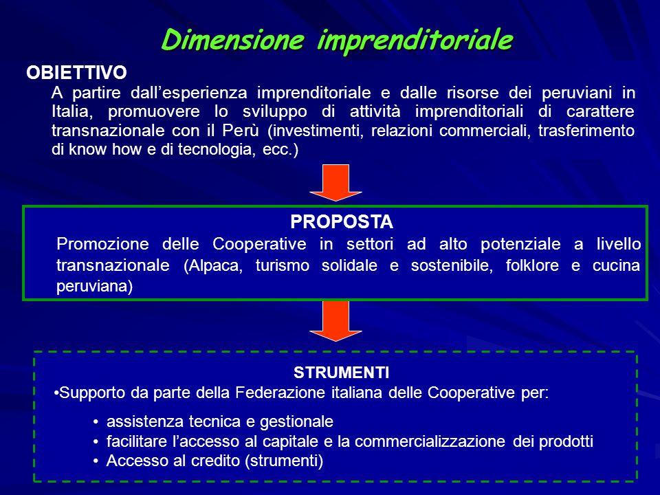 Dimensione imprenditoriale STRUMENTI Supporto da parte della Federazione italiana delle Cooperative per: assistenza tecnica e gestionale facilitare la