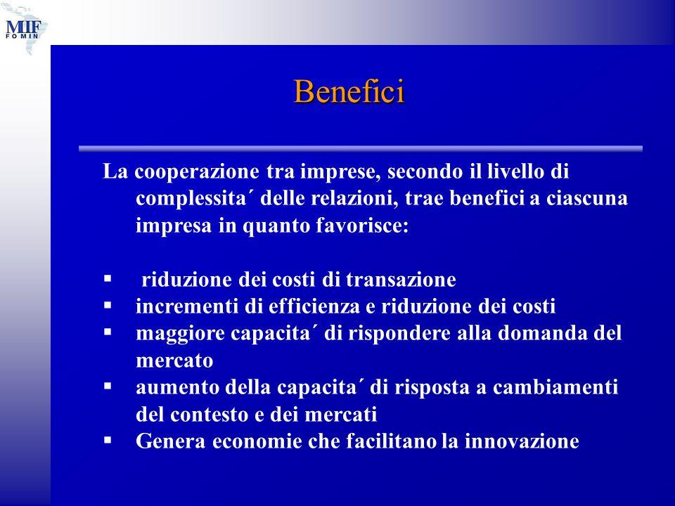 Benefici La cooperazione tra imprese, secondo il livello di complessita´ delle relazioni, trae benefici a ciascuna impresa in quanto favorisce: riduzione dei costi di transazione incrementi di efficienza e riduzione dei costi maggiore capacita´ di rispondere alla domanda del mercato aumento della capacita´ di risposta a cambiamenti del contesto e dei mercati Genera economie che facilitano la innovazione