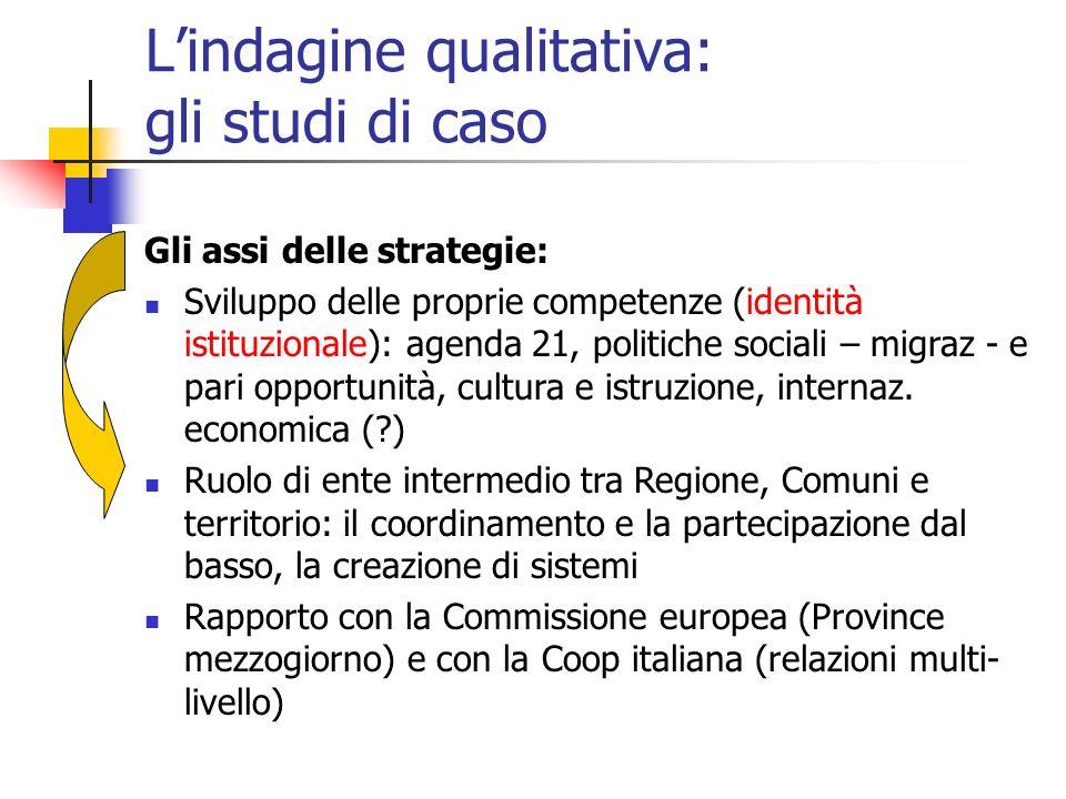 Lindagine qualitativa: gli studi di caso Gli assi delle strategie: Sviluppo delle proprie competenze (identità istituzionale): agenda 21, politiche so