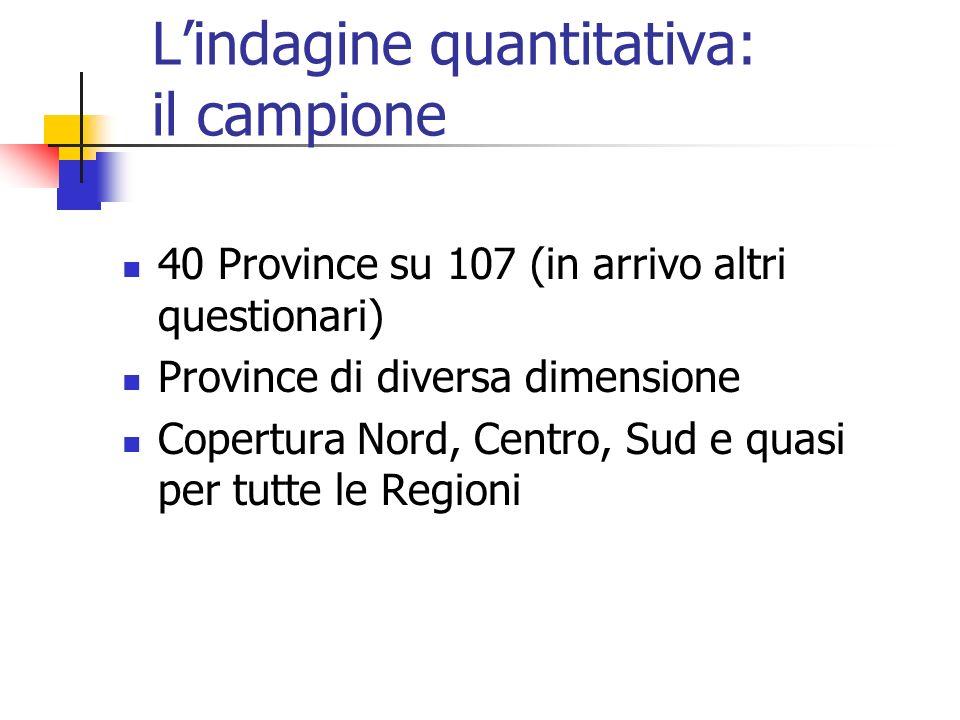 Lindagine quantitativa: il campione 40 Province su 107 (in arrivo altri questionari) Province di diversa dimensione Copertura Nord, Centro, Sud e quas