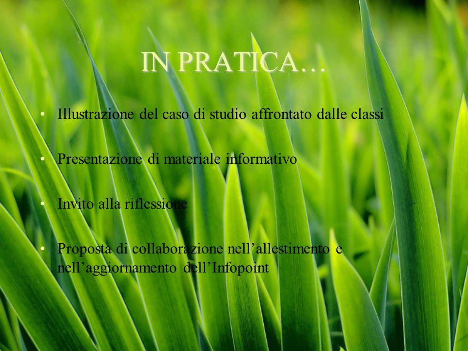 IN PRATICA… Illustrazione del caso di studio affrontato dalle classi Presentazione di materiale informativo Invito alla riflessione Proposta di collab