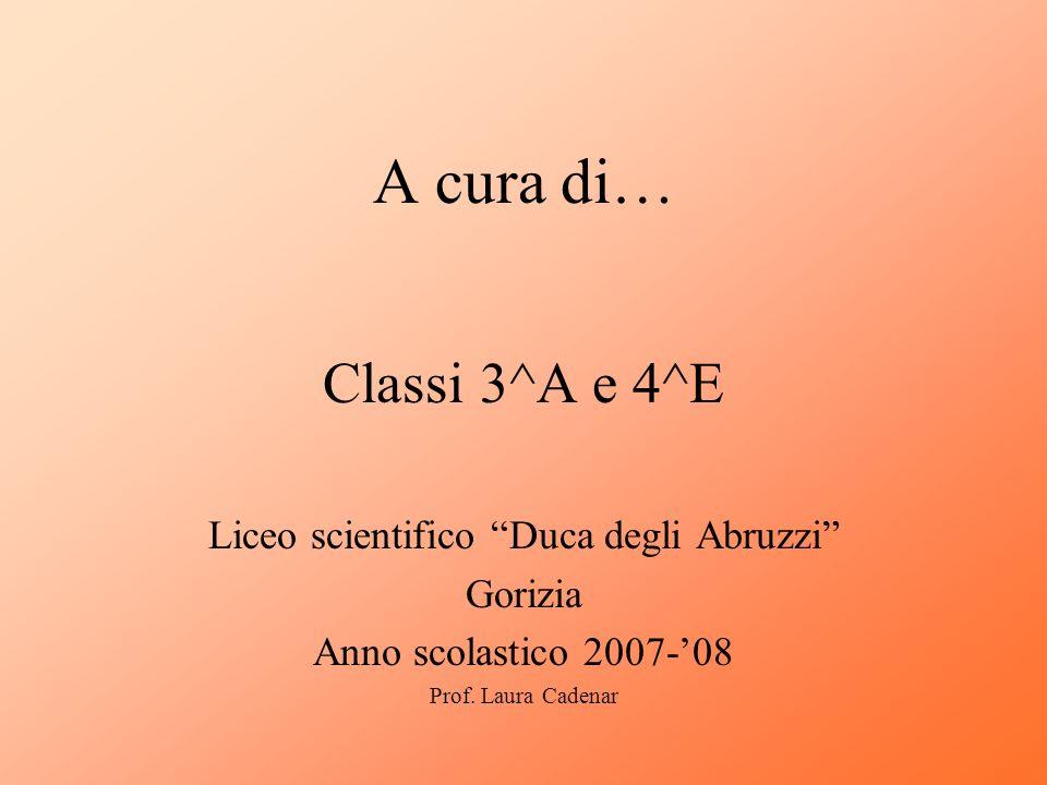 A cura di… Classi 3^A e 4^E Liceo scientifico Duca degli Abruzzi Gorizia Anno scolastico 2007-08 Prof. Laura Cadenar