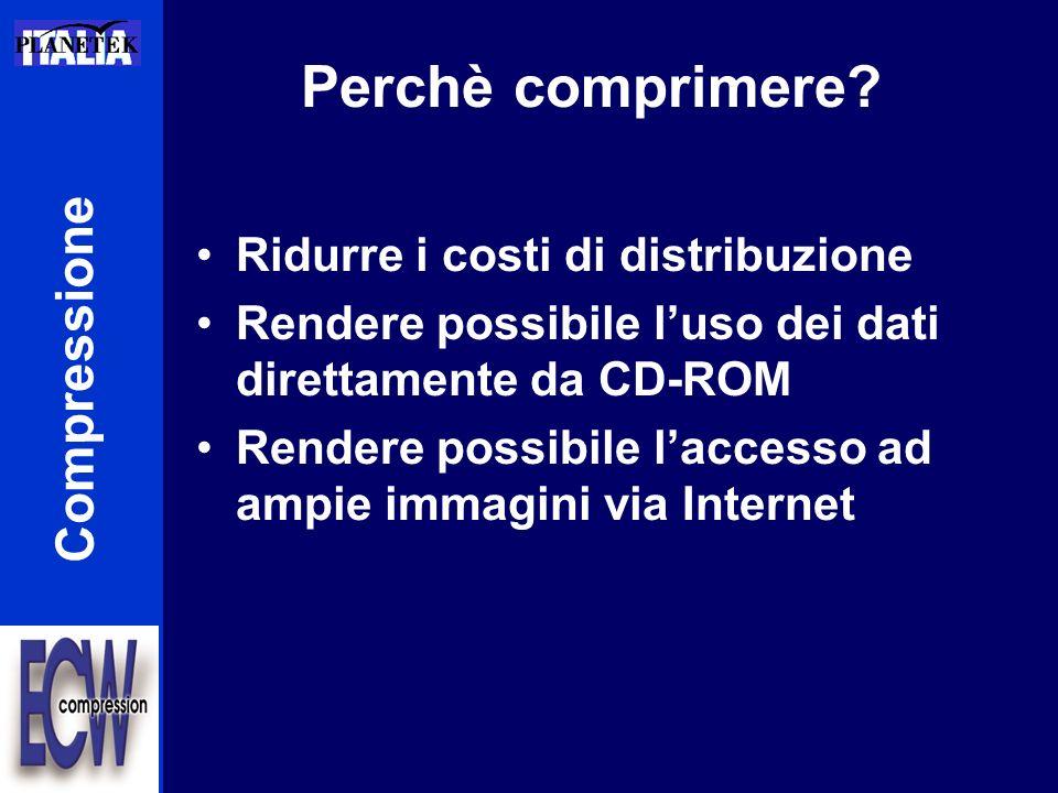 Perchè comprimere? Ridurre i costi di distribuzione Rendere possibile luso dei dati direttamente da CD-ROM Rendere possibile laccesso ad ampie immagin
