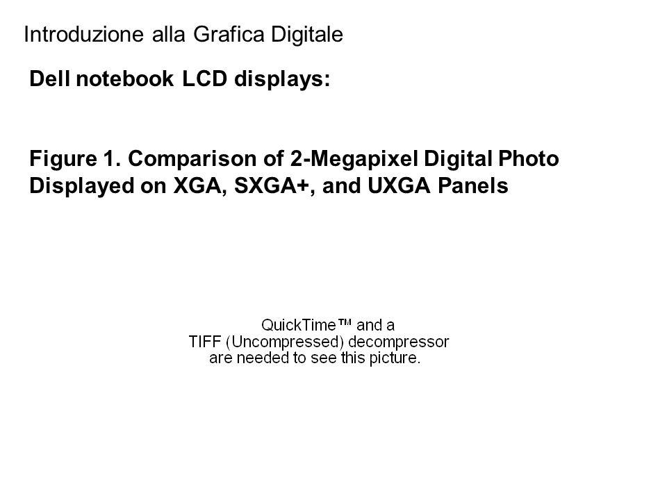 Introduzione alla Grafica Digitale Dell notebook LCD displays: Figure 1. Comparison of 2-Megapixel Digital Photo Displayed on XGA, SXGA+, and UXGA Pan