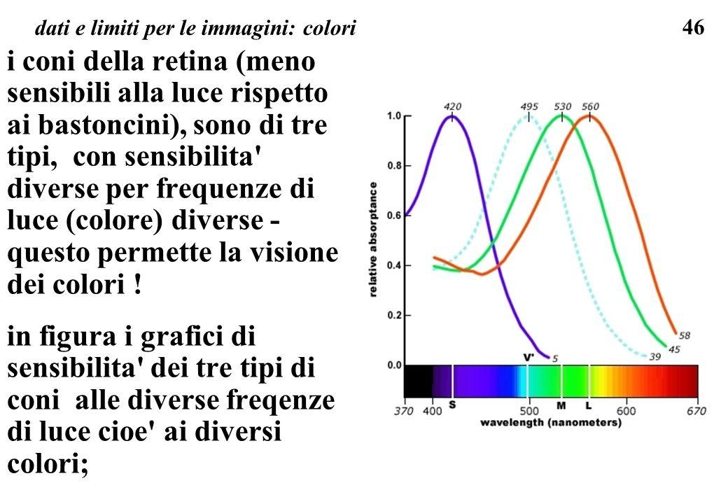 46 dati e limiti per le immagini: colori i coni della retina (meno sensibili alla luce rispetto ai bastoncini), sono di tre tipi, con sensibilita' div