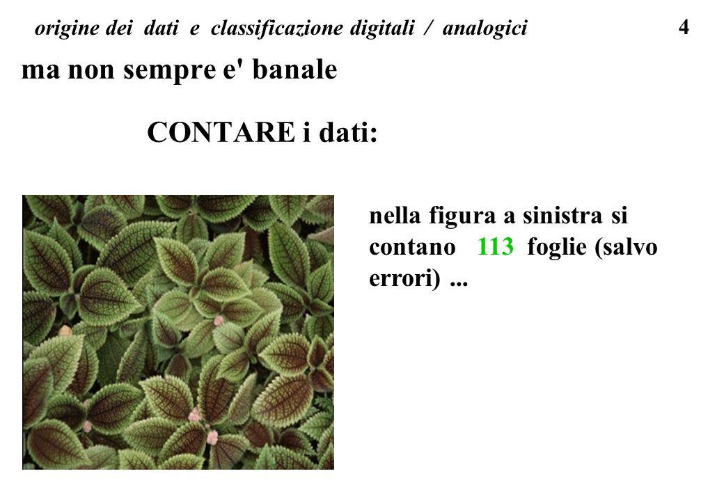 4 origine dei dati e classificazione digitali / analogici ma non sempre e' banale CONTARE i dati: nella figura a sinistra si contano 113 foglie (salvo