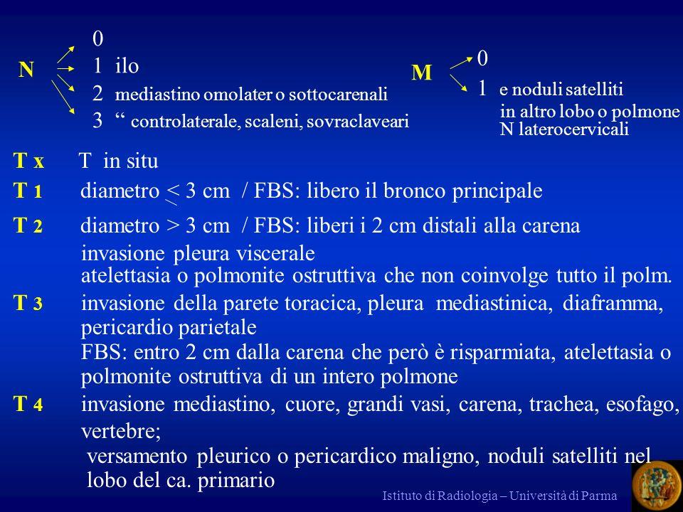 Istituto di Radiologia – Università di Parma Staging ca.