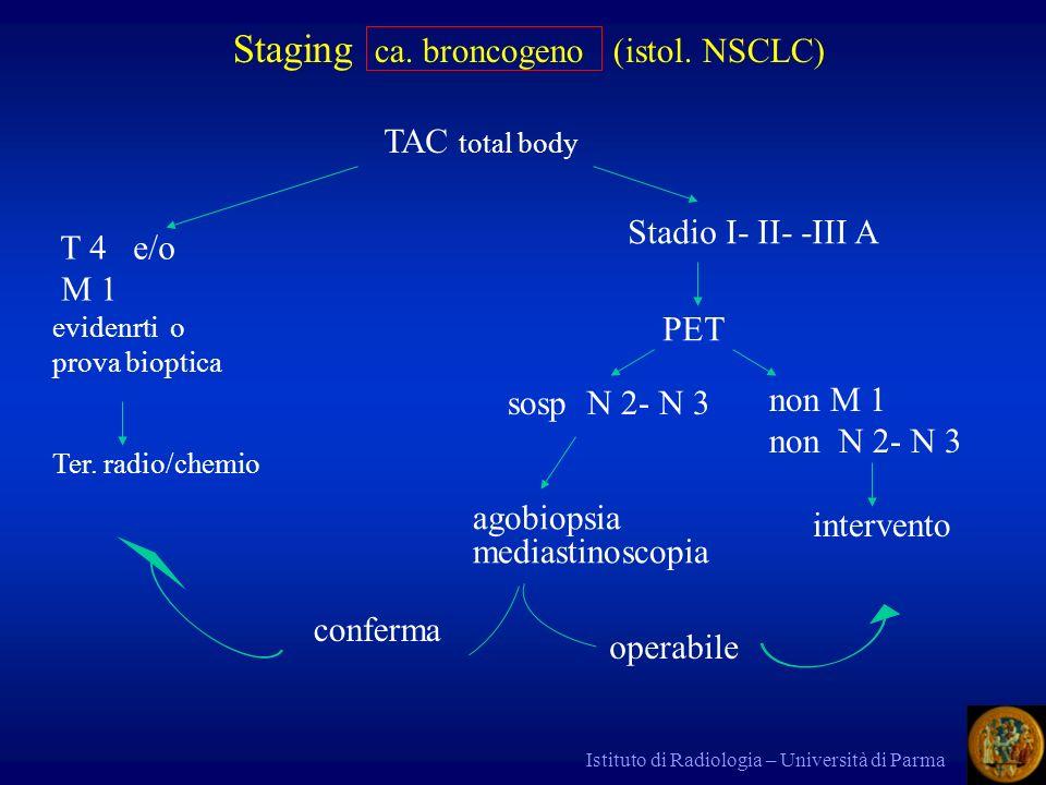 Istituto di Radiologia – Università di Parma Stadi 0 (T x ) I A T 1 N 0 M 0 I B T 2 II A T 1 N 1 II B T 2 N 1 / T 3 III A T 3 N 1 /T 1 N 2 /T 2 N 2 / T 3 N 2 III B T 4 N 0 /T 4 N 1 /T 4 N 2 /T 1 N 3 /T 2 N 3 /T 3 N 3 /T 4 N 3 IV M1 TNM ; 1997 Staging ca.