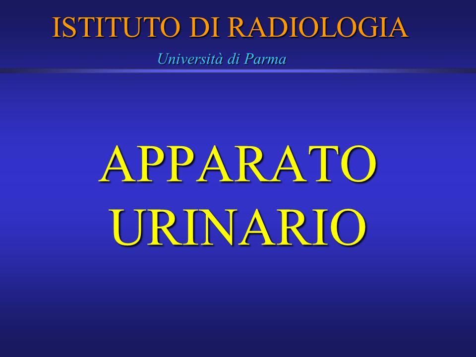APPARATO URINARIO ISTITUTO DI RADIOLOGIA Università di Parma