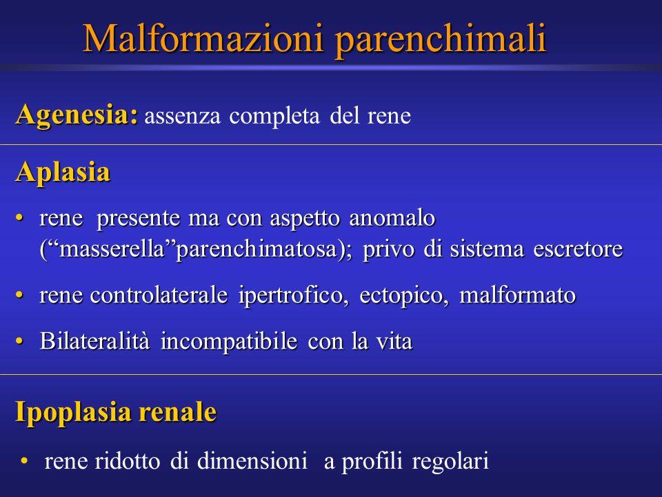 Malformazioni parenchimali Aplasia rene presente ma con aspetto anomalo (masserellaparenchimatosa); privo di sistema escretorerene presente ma con asp