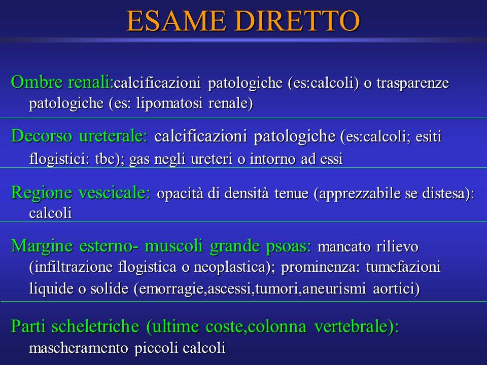 ESAME DIRETTO Ombre renali: calcificazioni patologiche (es:calcoli) o trasparenze patologiche (es: lipomatosi renale) Decorso ureterale: calcificazion
