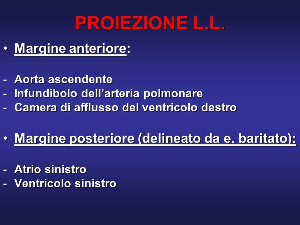 LE INDAGINI RADIOLOGICHE Istituto di Radiologia – Università di Parma PROIEZIONE PA PROIEZIONE LL (appoggio sx) Radiogramma Standard del Torace - Chest X Ray - CXR