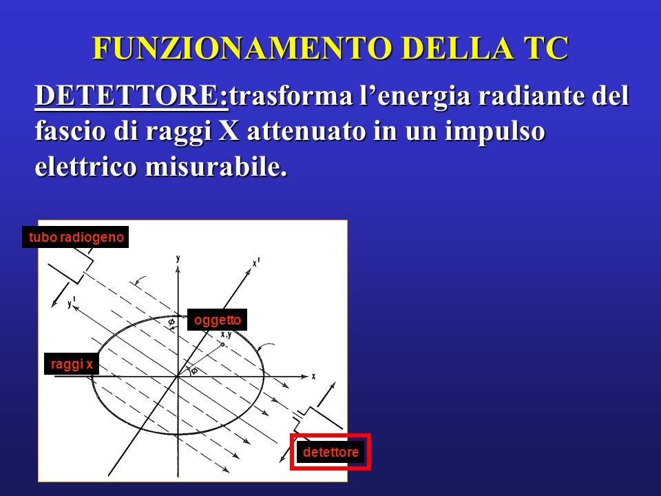 10 ° 0° 20 ° Si analizza lattenuazione del fascio di Raggi X in infinite traiettorie attraverso lo strato corporeo in studio