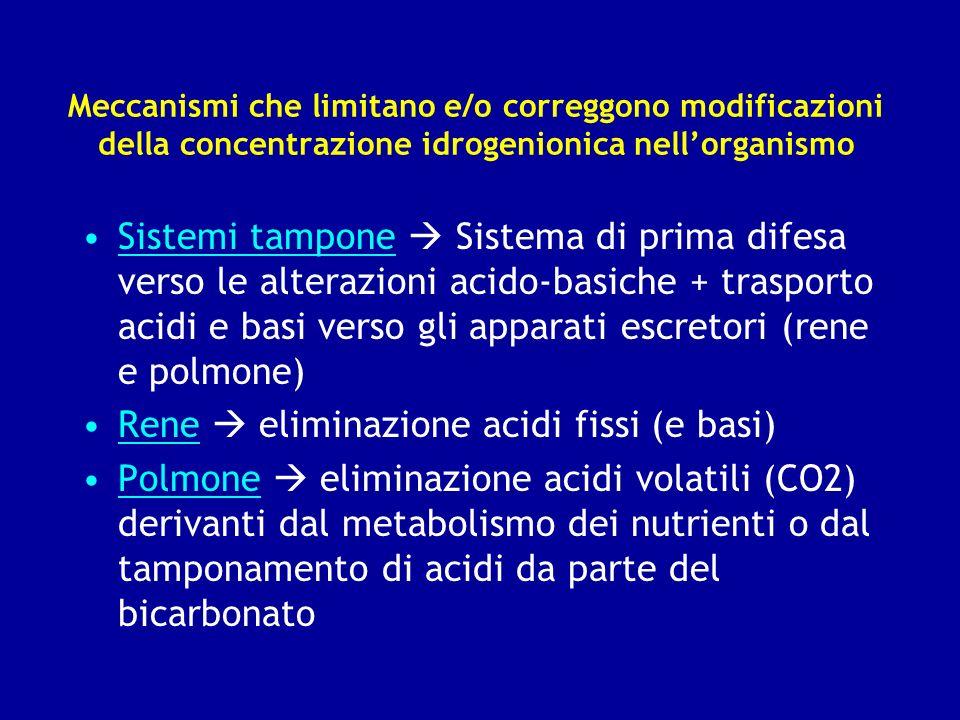 Meccanismi che limitano e/o correggono modificazioni della concentrazione idrogenionica nellorganismo Sistemi tampone Sistema di prima difesa verso le