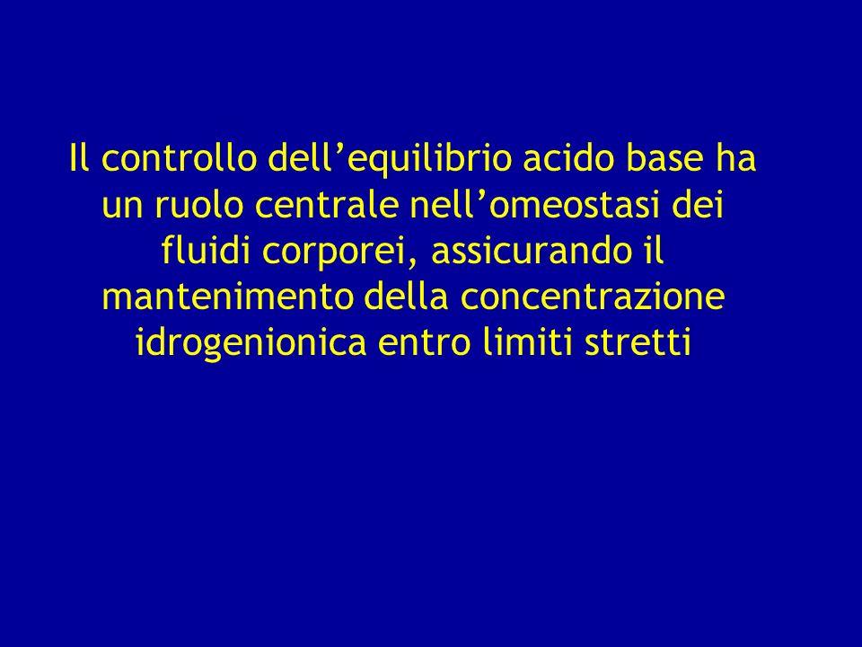 Il controllo dellequilibrio acido base ha un ruolo centrale nellomeostasi dei fluidi corporei, assicurando il mantenimento della concentrazione idroge