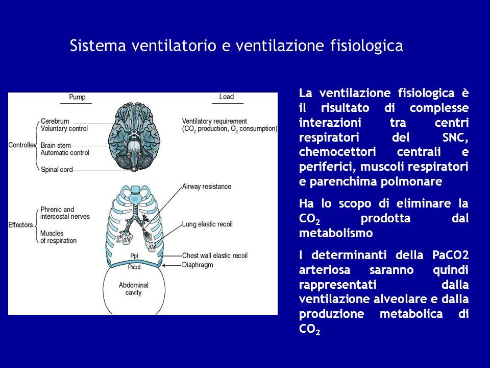 Sistema ventilatorio e ventilazione fisiologica La ventilazione fisiologica è il risultato di complesse interazioni tra centri respiratori del SNC, ch