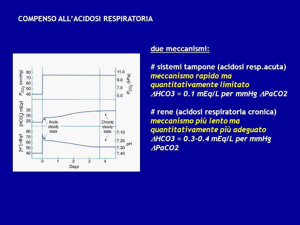 due meccanismi: # sistemi tampone (acidosi resp.acuta) meccanismo rapido ma quantitativamente limitato HCO3 = 0.1 mEq/L per mmHg PaCO2 # rene (acidosi