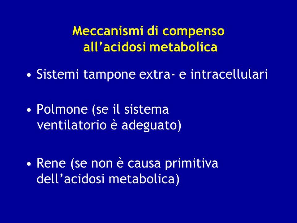 Meccanismi di compenso allacidosi metabolica Sistemi tampone extra- e intracellulari Polmone (se il sistema ventilatorio è adeguato) Rene (se non è ca