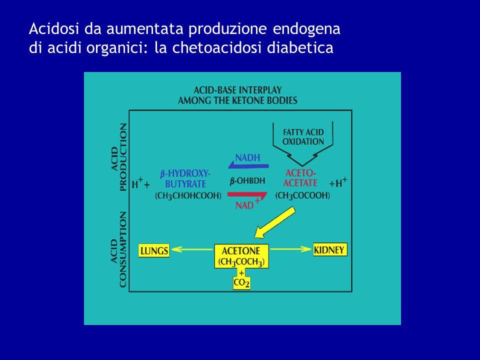 Acidosi da aumentata produzione endogena di acidi organici: la chetoacidosi diabetica