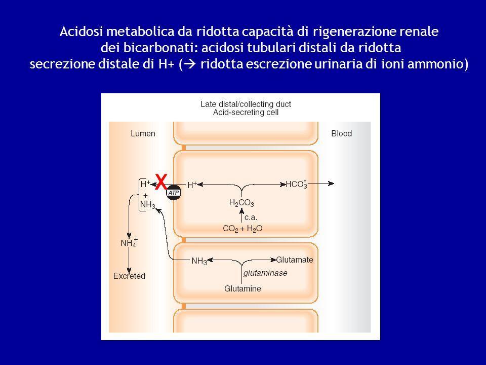 Acidosi metabolica da ridotta capacità di rigenerazione renale dei bicarbonati: acidosi tubulari distali da ridotta secrezione distale di H+ ( ridotta