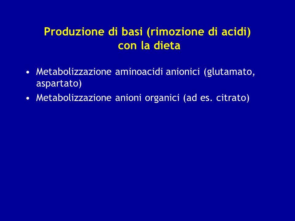 Produzione di basi (rimozione di acidi) con la dieta Metabolizzazione aminoacidi anionici (glutamato, aspartato) Metabolizzazione anioni organici (ad
