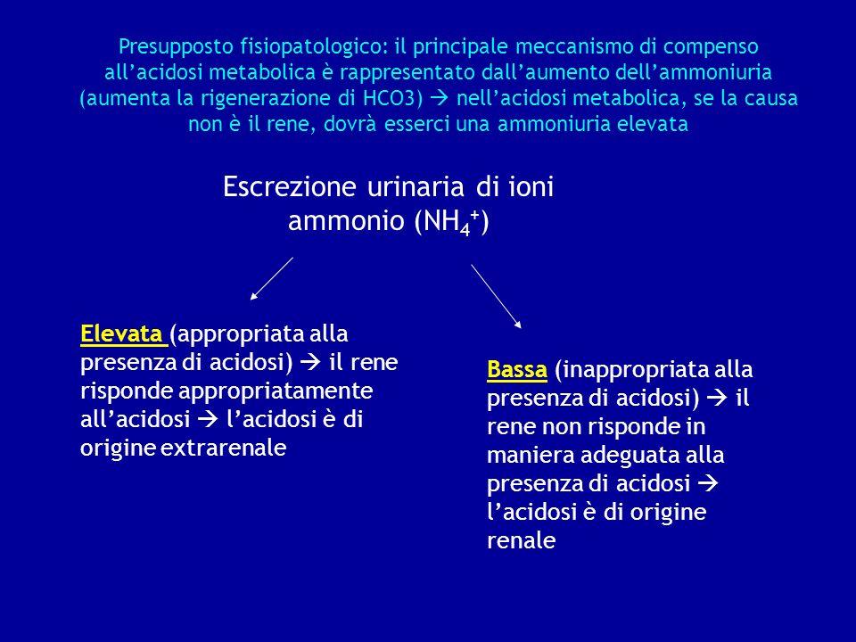Escrezione urinaria di ioni ammonio (NH 4 + ) Elevata (appropriata alla presenza di acidosi) il rene risponde appropriatamente allacidosi lacidosi è d