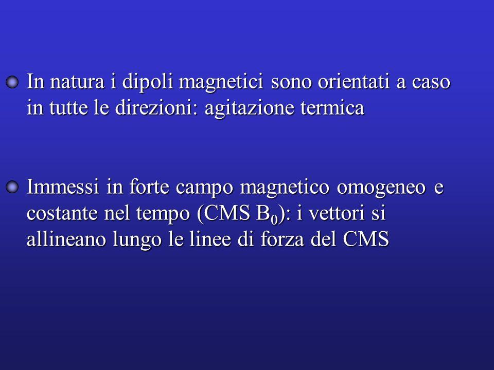 In natura i dipoli magnetici sono orientati a caso in tutte le direzioni: agitazione termica Immessi in forte campo magnetico omogeneo e costante nel