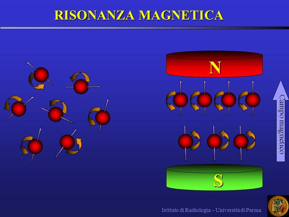 Istituto di Radiologia – Università di Parma RISONANZA MAGNETICA Campo magnetico N S