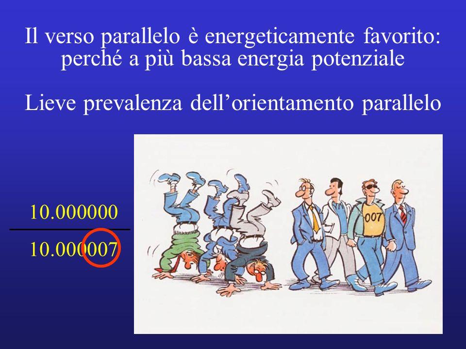 Il verso parallelo è energeticamente favorito: perché a più bassa energia potenziale Lieve prevalenza dellorientamento parallelo 10.000000 10.000007
