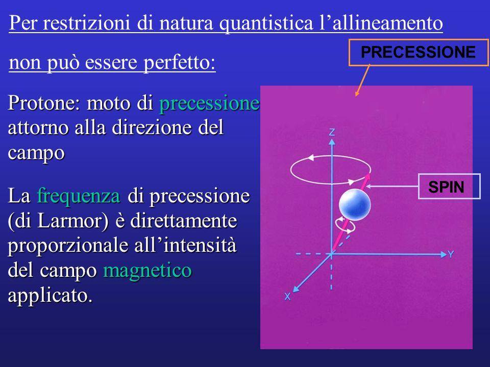 Protone: moto di precessione attorno alla direzione del campo La frequenza di precessione (di Larmor) è direttamente proporzionale allintensità del ca