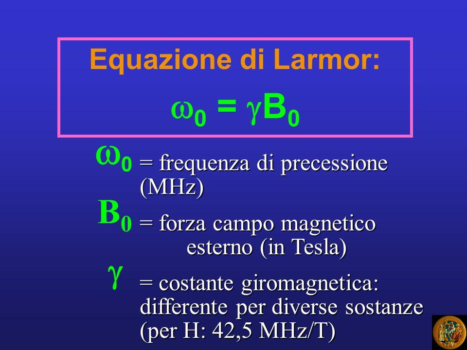 Equazione di Larmor: 0 = B 0 0 = frequenza di precessione (MHz) = forza campo magnetico esterno (in Tesla) = costante giromagnetica: differente per di