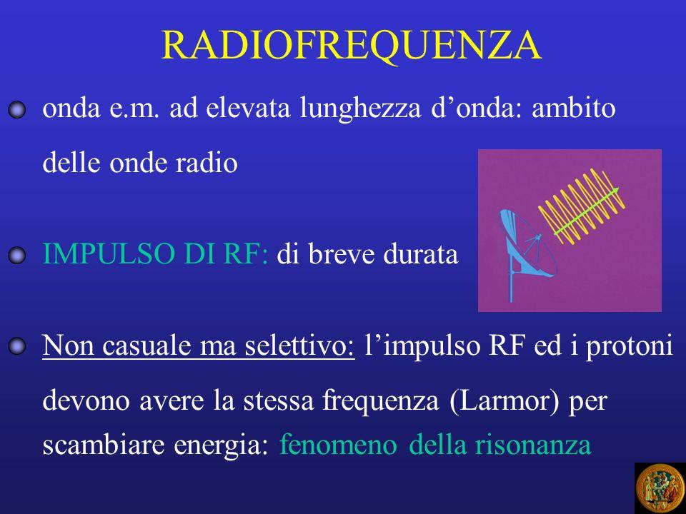 RADIOFREQUENZA onda e.m. ad elevata lunghezza donda: ambito delle onde radio IMPULSO DI RF: di breve durata Non casuale ma selettivo: limpulso RF ed i